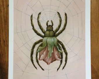 Azalea Arachnida Print