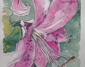 Lily flower art watercolour painting, an original one off watercolour painting of a Pink Tiger Lily