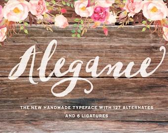 Alegance script Typeface/brush font/modern script/Wedding font/photography logo