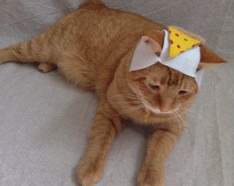 Slice of Pizza Hat for Cats