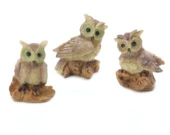 Miniature Owl Figures ~ Fairy Garden Animals ~ Shadow Box Display ~ Set of 3 Minis