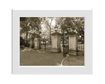 Digital Photo - Gate - Adelaide Botanic Gardens - South Australia