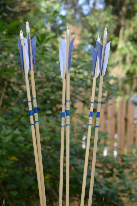 Archery Arrows, Junior archers, Poplar shafts set of 6 blue and silver for kids
