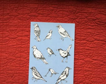 Collection of British Birds card