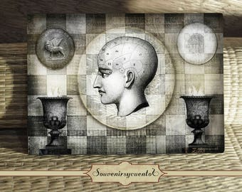 Venetian coins and a head vintage illustration