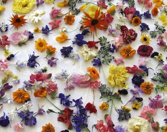 Custom Order for Sarah, Bulk Dried Flower Confetti, All Colors, Pink, White, Purple, Biodegradable, Dried Flowers, Dry Rose Petal, 400 Cups