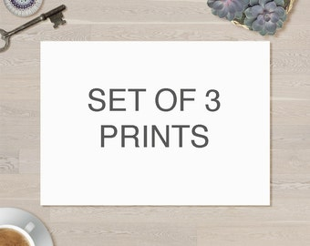 Choose any 3 prints from the shop, custom made collection.