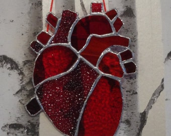 Stained glass anatomical heart hanging