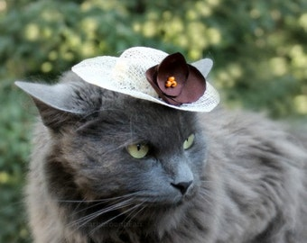 Cat Hat - Spring Hat for Cat - French Roast - Sinamay Pet Hat - Cat Bonnet - Small Sun Hat
