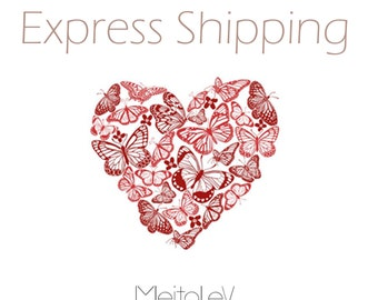 Express Shipping Worlwide