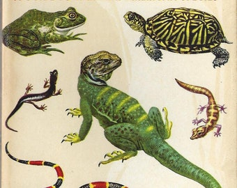 Vintage Reptiles and Amphibians A Golden Nature Guide Book, C1956