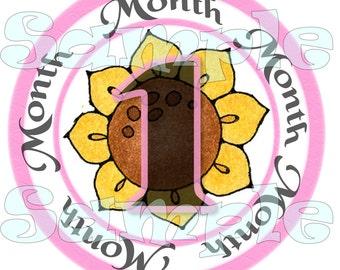 First Year Monthly Sticker set Baby Shower gift 12 Months Infant Month stickers Month Baby Stickers Baby Girl Onepiece Pink Sunflowers decal