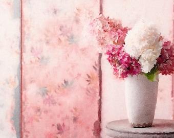 Rose-Pink wall wall