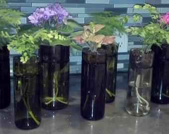 Self Watering Repurposed Wine Bottle Planters
