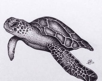 Sea Turtle Drawing Print - A4