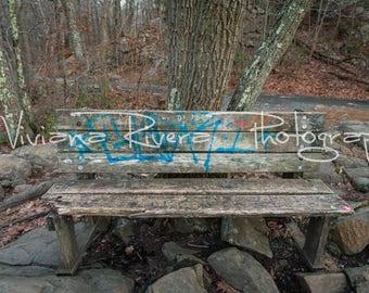 Sleeping Giant State Park_Hamden_Connecticut_Bench_Rusty_Broken_Graffiti_Wooden_Photography_Nature_Prints