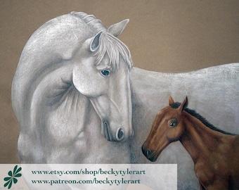 Lipizzaner Stallion and Foal Original Drawing