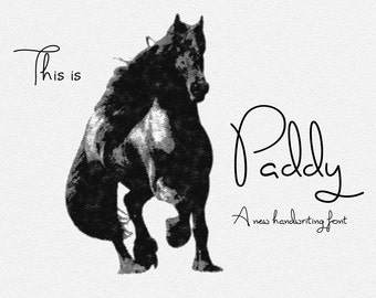 Digital font - Script Font. Handwriting font. Paddy font. Wedding font. Can be used for a photography logo Monogram