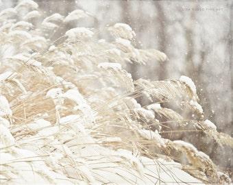 Snow Print or Canvas Art, Winter White Decor, Holiday Decor, Grey Beige Cream, Snowflakes, Winter Grasses, Winter Nature Print.