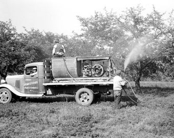 """1935 Spraying Apple Orchards. Hightstown NJ Vintage Photograph 13"""" x 19"""" Reprint"""