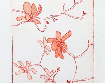 original etching and aquatint of magnolia blossom flowers