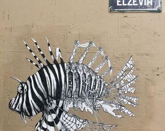 "Travel Photography ""Paris Street Art"" Print"