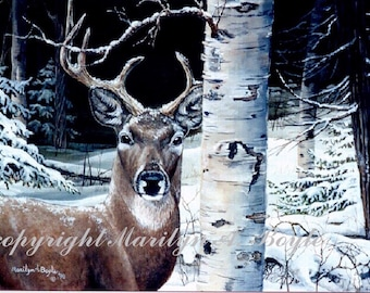 GICLEE PRINT DEER; Wildlife, nature, birch tree, winter, wilderness, wall art, white tail deer, 8 x 10 inches, deer print, Canadian art
