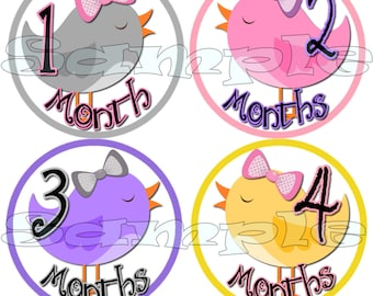 Bird Baby girl Monthly stickers, Baby month stickers, Month baby stickers, Baby girl monthly stickers, Baby age stickers, Baby girl stickers