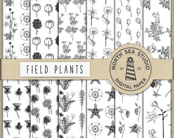 FIELD PLANTS, Digital Paper, Floral Patterns, Black And White Flower Paper, Wildflowers Patterns, Coupon Code: BUY5FOR8