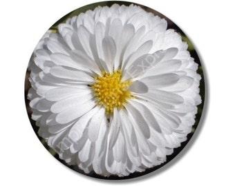 White Daisy Flower Round Mousepad