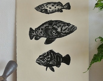 Trio Of Groupers, Original Linocut Print, Hand Printed, Limited Edition of 8.