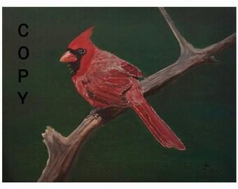 Cardinal print of original painting