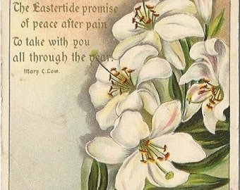 White Lilies by Mary C Cow 1907 Julius Bien & Co N.Y. Easter Greeting Vintage Postcard