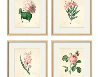 Antique botanical print Botanical art prints flower prints wall art flowers botanical poster antique wall art home decor wall art SET of 4