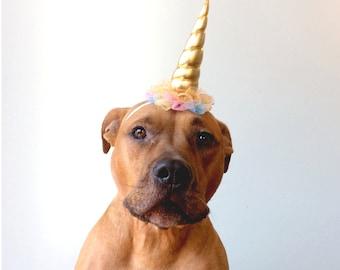 Dog Unicorn Hat, Unicorn, Unicorn Headband for Dogs, Unicorn Party, Dog Birthday Hat. Dog Unicorn, Dog Costume, Dog Gotcha Day
