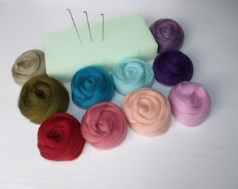 Special carded 10 color set 1 Merino Wool Felting Kit