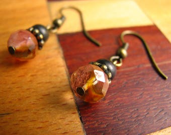 3605 -  Earrings  Smoked crystal, Wood