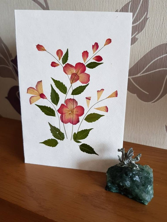 Blank pressed flower floral nature card flower patch
