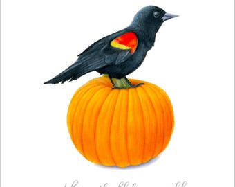 Red-Winged Blackbird with Thoreau Pumpkin Quote by SBMathieu