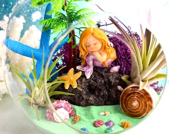 "Mermaid Beach Terrarium Kit ~ 7"" Air Plant Terrarium Kit ~ Coastal Living Beach Decor ~ Mermaid Figurine ~ Resting Mermaid on a Rock ~ Gift"
