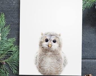 Nursery animal print PRINTABLE art,baby owl print,nursery decor,animal art,baby animals,nursery wall art,owl wall art,kids art,baby animal