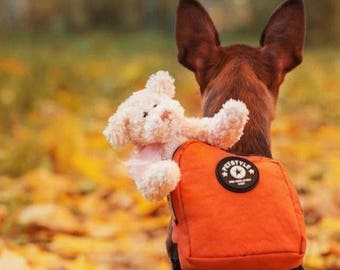 Good Quality Backpack for Dog. Very Cute Dog Backpack