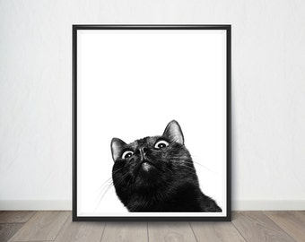 Cat Poster, Black and White Animal Prints,Digital Art, Digital Art Print, Digital Artworks, Digital Print Art, Digital Art Download
