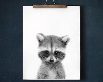 Woodland nursery prints, Raccoon print, PRINTABLE art, Nursery decor, Animal art, Baby animals, Nursery wall art, Kids art, Baby room decor