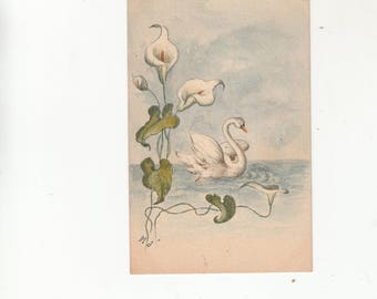 Original Art-Hand Painted Antique Postcard Undivided Back C1905 Beautiful Swan Swimming With Calla Lilies