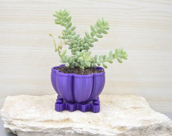 Cactus planter/Plant pot/3D printed bowl/Saucer and drainage/cactus planter/gift for him/father's day/desk organizer/Modern planter