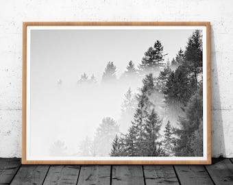 Black White Forest, Forest Art, Minimalist Print, Black White Prints, Forest Print, Minimalist Decor, Forest Wall Print, Forest Art Decor