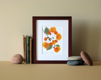 """Pressed flower art, 8"""" x 10"""" matted, Bougainvillea blooms, Apricot, no. 066"""