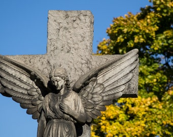 Angel of the Cemetery