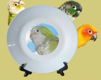 "Quaker Parrot Monk Parakeet Blue Sky Clouds White Decorative Ceramic 8"" Plate and Display Stand"